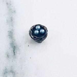 Pearl Nest Pandora Charm